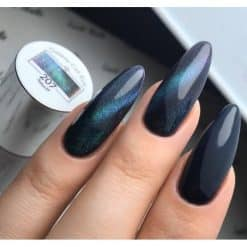 Vasco Gel Polish Galaxy Cat Eye 7d 207